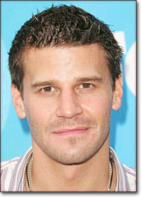 Photo David Boreanaz